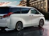丰田 埃尔法 2020款 丰田 埃尔法 2020款 双擎2.5L尊贵版-第12张图