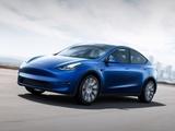 特斯拉 Model Y 2021款 特斯拉 Model Y 2021款 Performance高性能全轮驱动版-第4张图