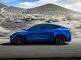 特斯拉 Model Y 2021款 特斯拉 Model Y 2021款 Performance高性能全轮驱动版-第2张图